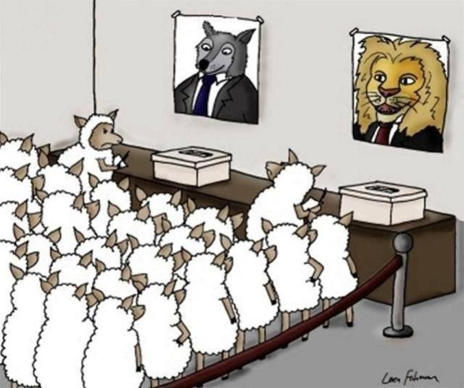 Vous avez dit démocratie ? :