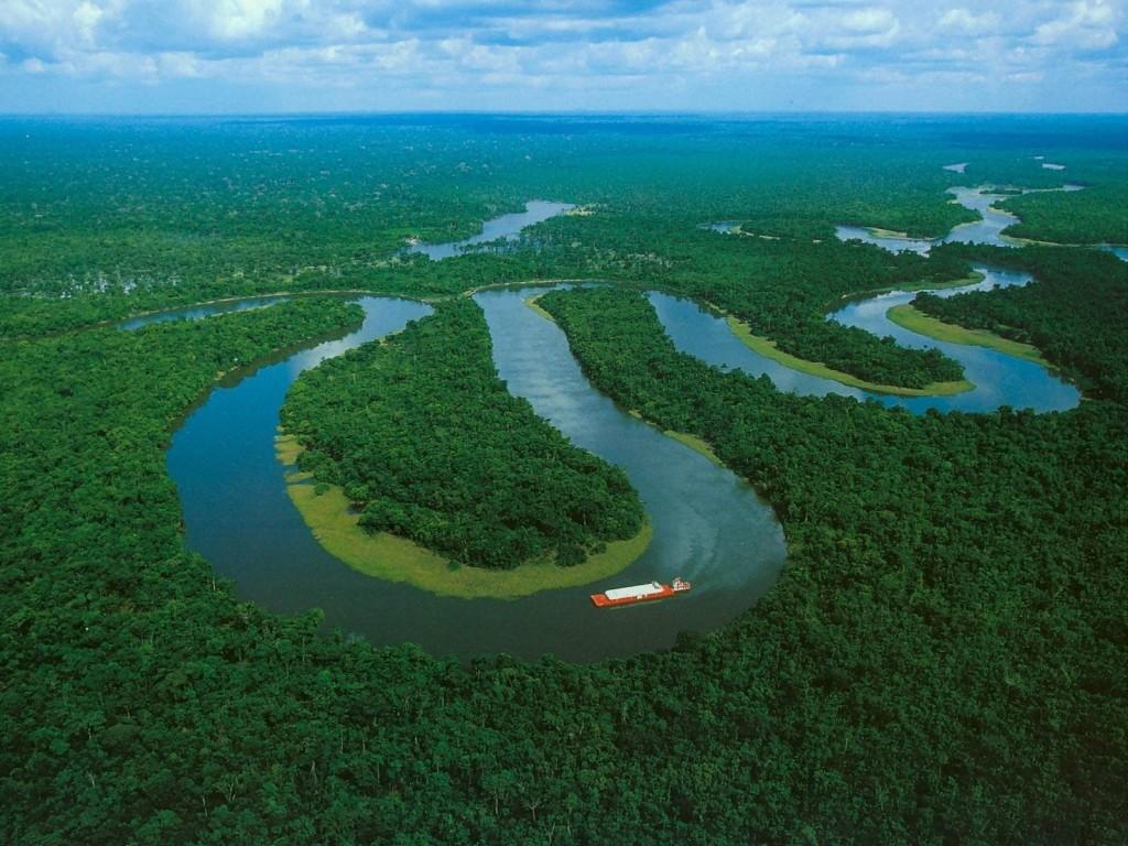Sauver l'Amazonie, c'est possible ! :